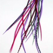 Real Feather Hair Extensions - Queen Bee