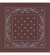 Brown Bandanna - Paisley