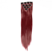 Neitsi 10pcs 46cm Coloured Highlight Synthetic Clip on in Hair Extensions #F03 Red Wine