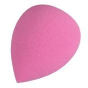 CAETLE® Beauty Flawless Makeup Blender Comestic Sponge Puff