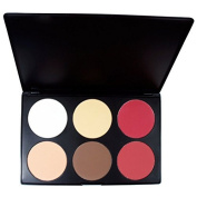 Amazing2015 Professional 6 Colours Face Power Foundation Blush Blusher Makeup Palette