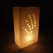 Shooting Star Paper Luminaries Bag