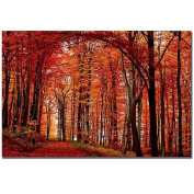 Trademark Fine Art The Red Way by Philippe Sainte-Laudy Canvas Wall Art, 36cm x 48cm