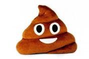 Poop Emoji 33cm Plush Throw Pillow by Throwboy