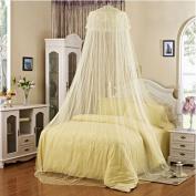 Kobwa(TM) White Elegant Lace Bed Canopy Mosquito Net with Kobwa's Keyring
