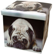 Pug Folding Storage Box and Seat