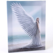 Fantastic Anne Stokes Design Spirit Guide Angel - A Gothic Angel Holding a key Standing on a Beach Canvas Picture on Frame Wall Plaque / Wall Art