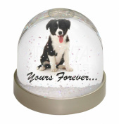 Border Collie Puppy 'Yours Forever' Snow Dome Globe Waterball Gift
