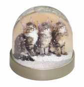 Cute Maine Coon Kittens Snow Dome Globe Waterball Gift