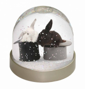 Rabbits in Top Hats Snow Dome Globe Waterball Gift