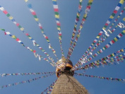 Large Fairtrade Tibetan Prayer flags on Long String - 25 flags - total string length approximately 680cm, each flag measures approx 25 cm by 16cm