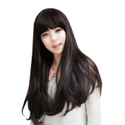 TOOGOO(R) New Style Womens Girls Sexy Long Fashion Curly Full Wig+wigs cap gift