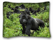 Decorative Standard Pillow Case Animals gorilla grass s trees walk 50cm *70cm One Side