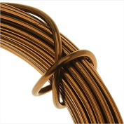 Artistic Wire Aluminium Craft Wire, 12 Gauge Thick, 12 Metre Spool, Anodized Light Brown