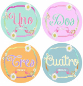 Mumsy Goose Baby Girl Month Stickers Spanish 1 - 12 Meses
