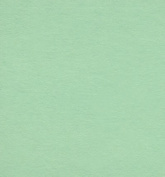 Colour Card Stock Paper, 28cm x 43cm , 50 Sheets Per Pack - Green