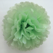 "SUNBEAUTY 10""/25cm 5pcs Tissue Paper Light Green Pom Poms Flower Balls Hanging Decoration Party Birthday Wedding"