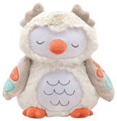 Carters Interactive Owl Soother