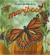 El Ciclo De Vida De La Mariposa/Life cycle of a butterfly (Ciclo De Vida / the Life Cycle)