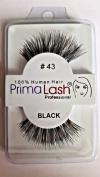 100% Human Hair False Lashes by PrimaLash Professional STYLE 43- Handmade Strip Lashes