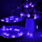 Lychee 4m 13ft 40LED Waterproof Battery Heart-shaped Operated Fairy String Lights for Outdoor Indoor Wedding Garden Home Party Christmas Decoration