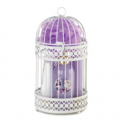 Spa Set in a Lantern | Wisteria Scented