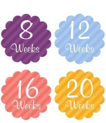 Belly Bump Stickers Momma To Be Pregnancy Stickers Belly Stickers Scalloped Striped Colourful Collection
