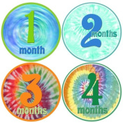 Mumsy Goose Baby Boy Stickers Monthly Age Stickers 1-12 Months Keepsakes