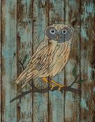 Woodland Collection,9 X 11.5 Print, Nursery Wall Art Decor, Kid's Art Decor, Gender Neutral Nursery, Nature Themed, , Owl, , Woodland Nursery,