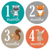 Pinkie Penguin Woodland Animals Baby Monthly Stickers - Milestone Onesie Stickers - Baby Boy - 1-12 Months - Baby Shower Gift
