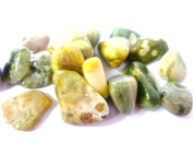 Tumbled Orbicular Jasper Tumble Stone - A Grade Quality Crystal - Helps cleanse body of toxins - Free Postage! 5 Stone Pack