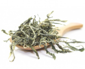 Fujian Mao Feng Supreme Best Chinese Loose Leaf Green Tea