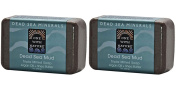 One With Nature Dead Sea Salt Mud Argan Oil and Shea Butter Triple Milled Soap 210ml, Pack of 2