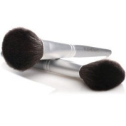 Professional Powder Brush 1 pc by T. LeClerc