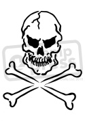 A5 Skull & Crossbones Wall Stencil / Template