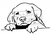A5 Puppy Dog Wall Stencil / Template