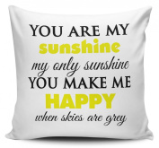 You Are My Sunshine Novelty Cushion Cover