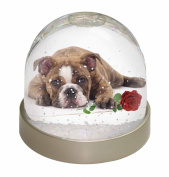 Bulldog with Red Rose Snow Dome Globe Waterball Gift