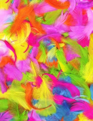 Bright Multicolour Feathers Ideal for Art Craft Easter Bonnet Decoration