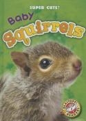 Baby Squirrels (Blastoff Readers