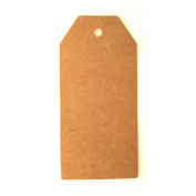 LWR Crafts 100 Hang Tags with Jute Twines 30m