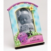 Pink Lady Bug Photo Frame For Baby Girls 10cm x 15cm