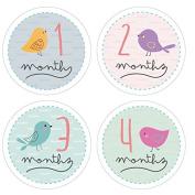Pinkie Penguin Baby Monthly Stickers - Birds - Milestone Onesie Stickers - 1-12 Months