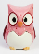 Novelty Cutie Owl 2 in 1 Egg Cup and Salt Shaker Set (Pink), Height