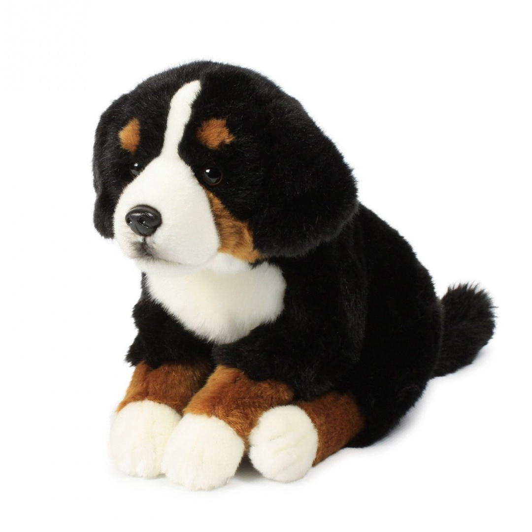 Bernese Mountain Dog Toys Toys Buy Online From Fishpond Co Nz