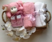 Deluxe Newborn Baby Girl Hamper - free. Message Option