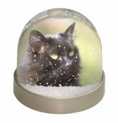 Beautiful Fluffy Black Cat Snow Dome Globe Waterball Gift