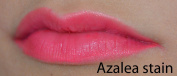 Super Staying Lip Stain - Azalea hot pink - Morpho Cosmetics - Long Lasting Lip Stain