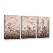 ArtWall Cora Niele's Wildflowers 3 Piece Gallery Wrapped Canvas Set, 46cm by 90cm , Brown