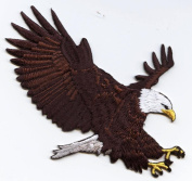 Bald Eagle Landing Iron On Embroidered Applique Patch
